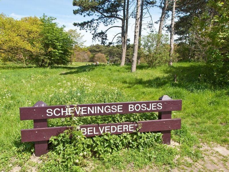 Foto Scheveningse Bosjes